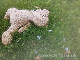 Lost teddy bear with foam-loss