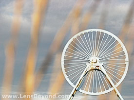 Apedale pit wheel through sunlit grass