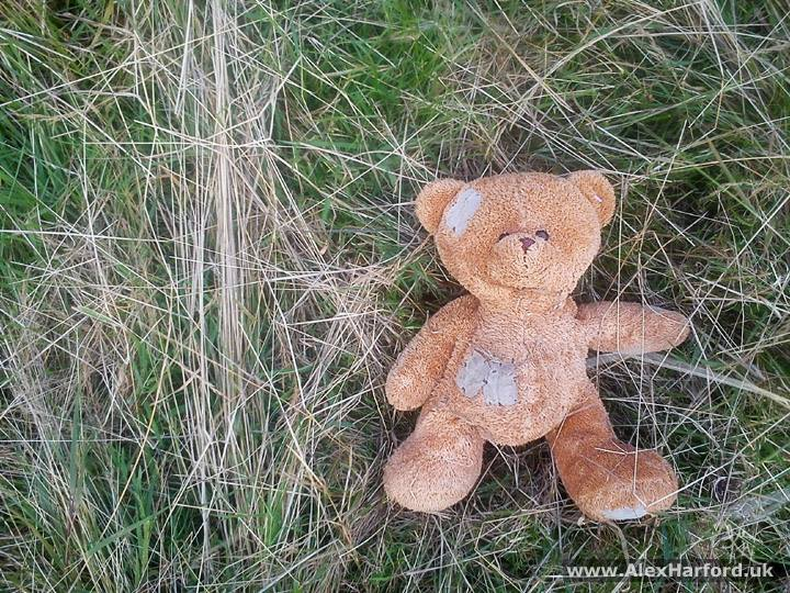 Patched up brown teddy bear in field