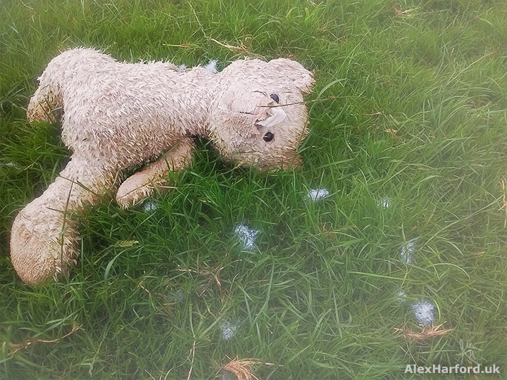 Light brown teddy with foam scattered in field