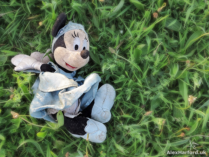 Lost Minnie Mouse teddy in field