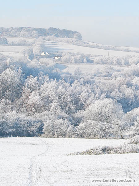 Hoar frost and snow covers field, trees and farmhouse
