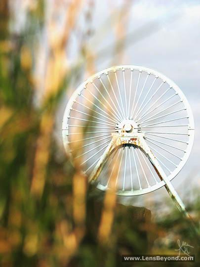 Apedale pit wheel in bright sun, through fiery orange grass