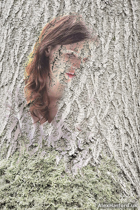 Woman in tree bark