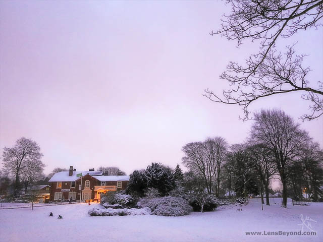A snowy magenta sunset at Brampton Park