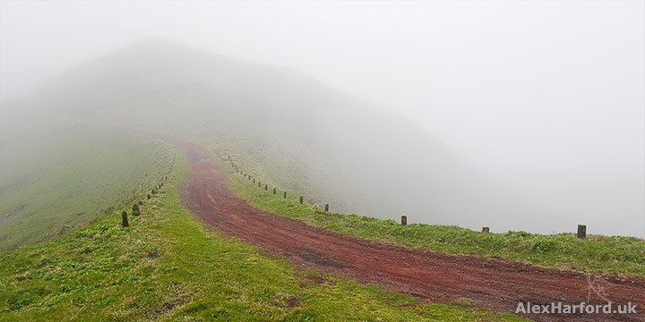 Trail through misty green landscape