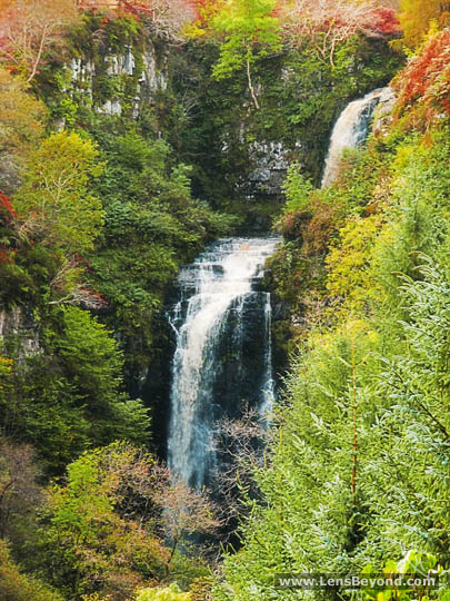 Glenashdale Waterfall and autumn colours