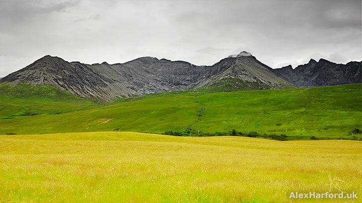 Skye's Cuillin mountains, with green and yellow fields across the foreground