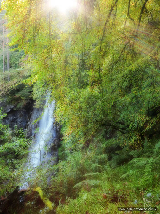 Photo of Grey Mare's Tail through trees