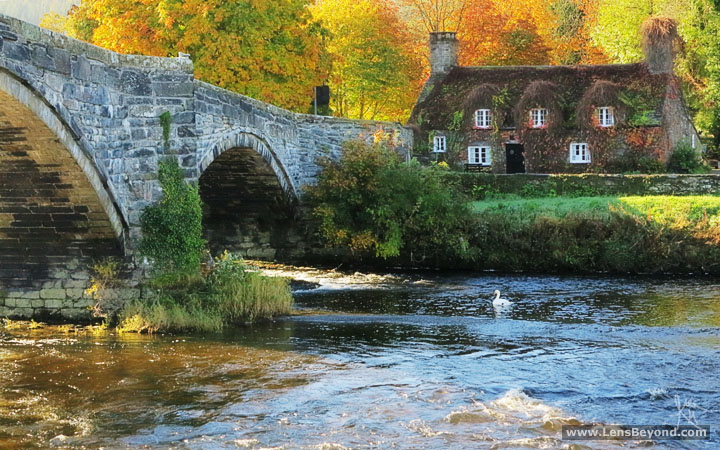 Pont Fawr bridge and Tu Hwnt Ir Bont Tearooms in Autumn. Photo by Alex Harford